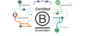 Becoming a B Corp